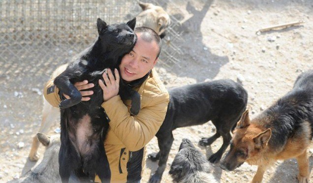 Chinese Man Spends $400,000 To Buy A Slaughterhouse & Saves 2,000 Dogs.