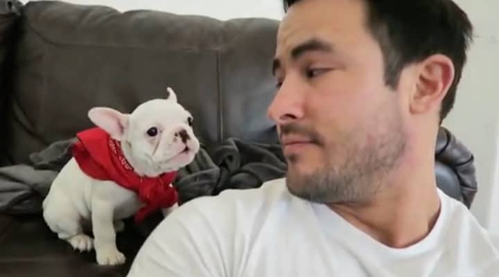 most people dont know how to respond to a compliment including this gorgeous tiny puppy when his dad lets him