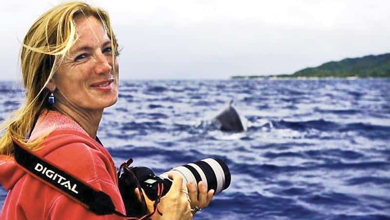 Nan Hauser diver saved by whale