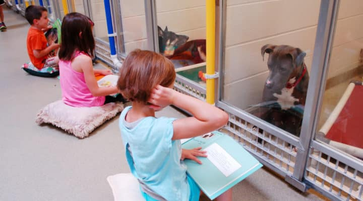 Kids read to dogs to help improve their verbal and reading