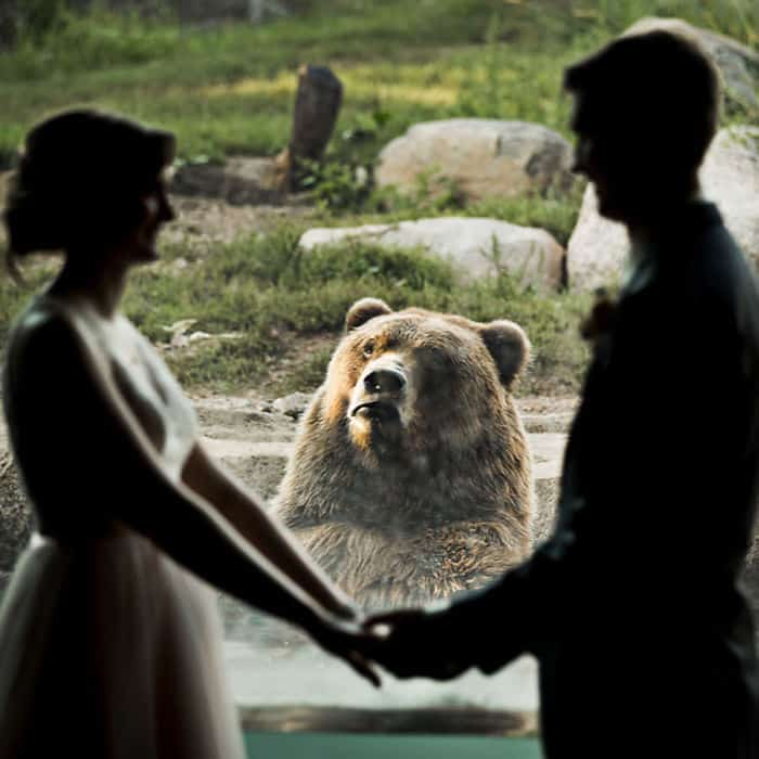 married at a zoo