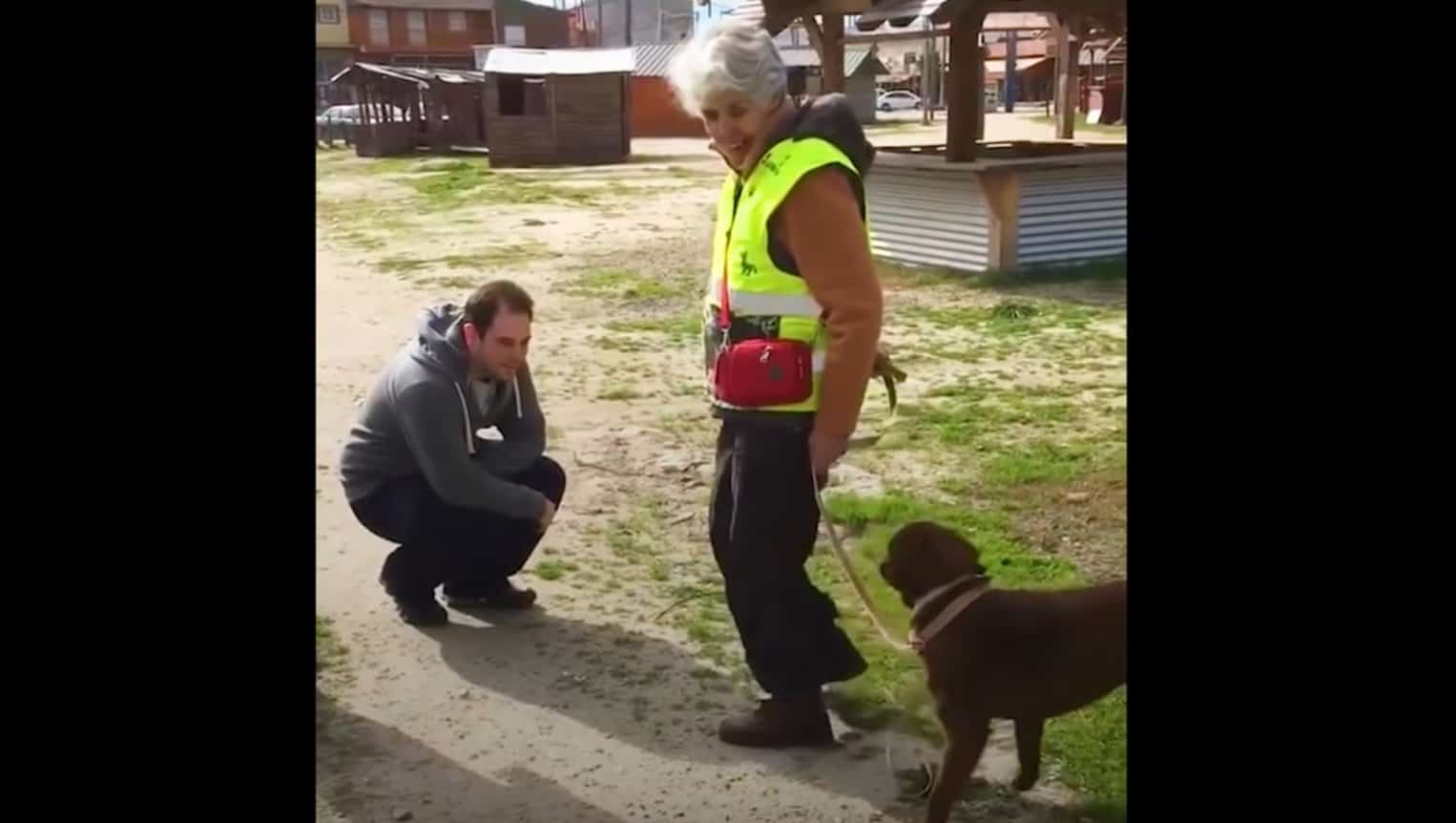 dog reunited with owner