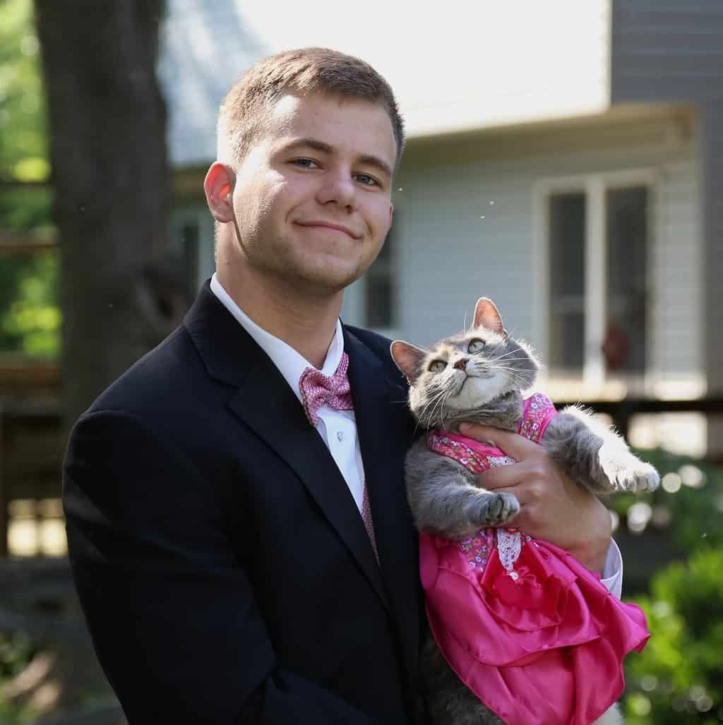 cat to prom