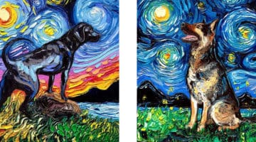 van gogh starry night dogs
