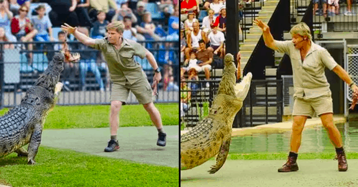 steve irwin and son