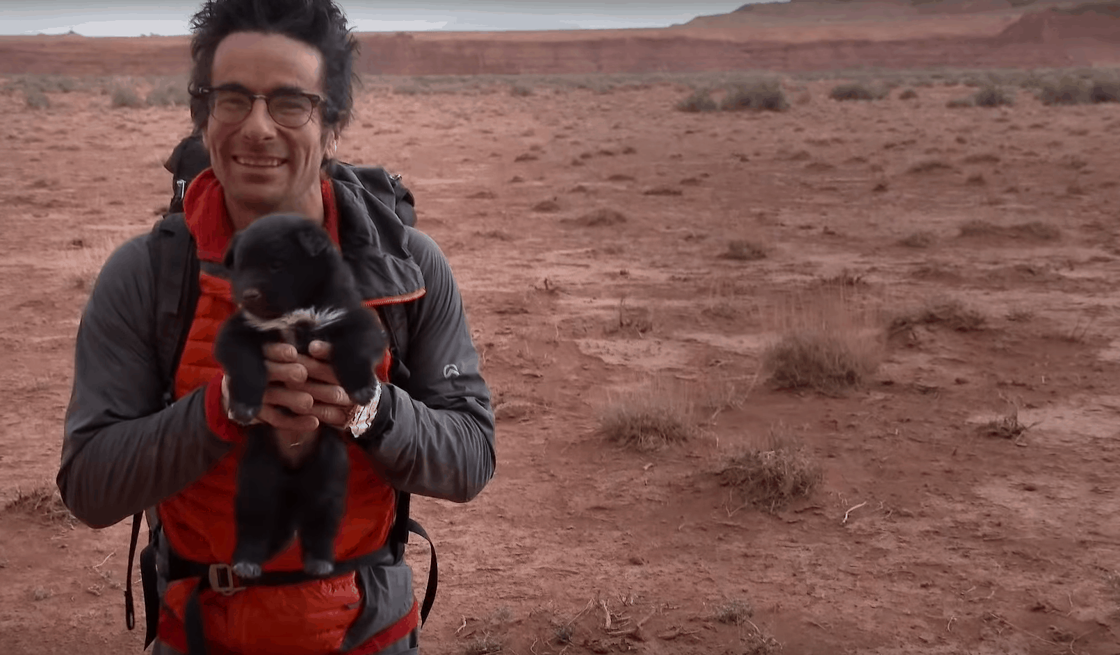 desert puppy adventurers