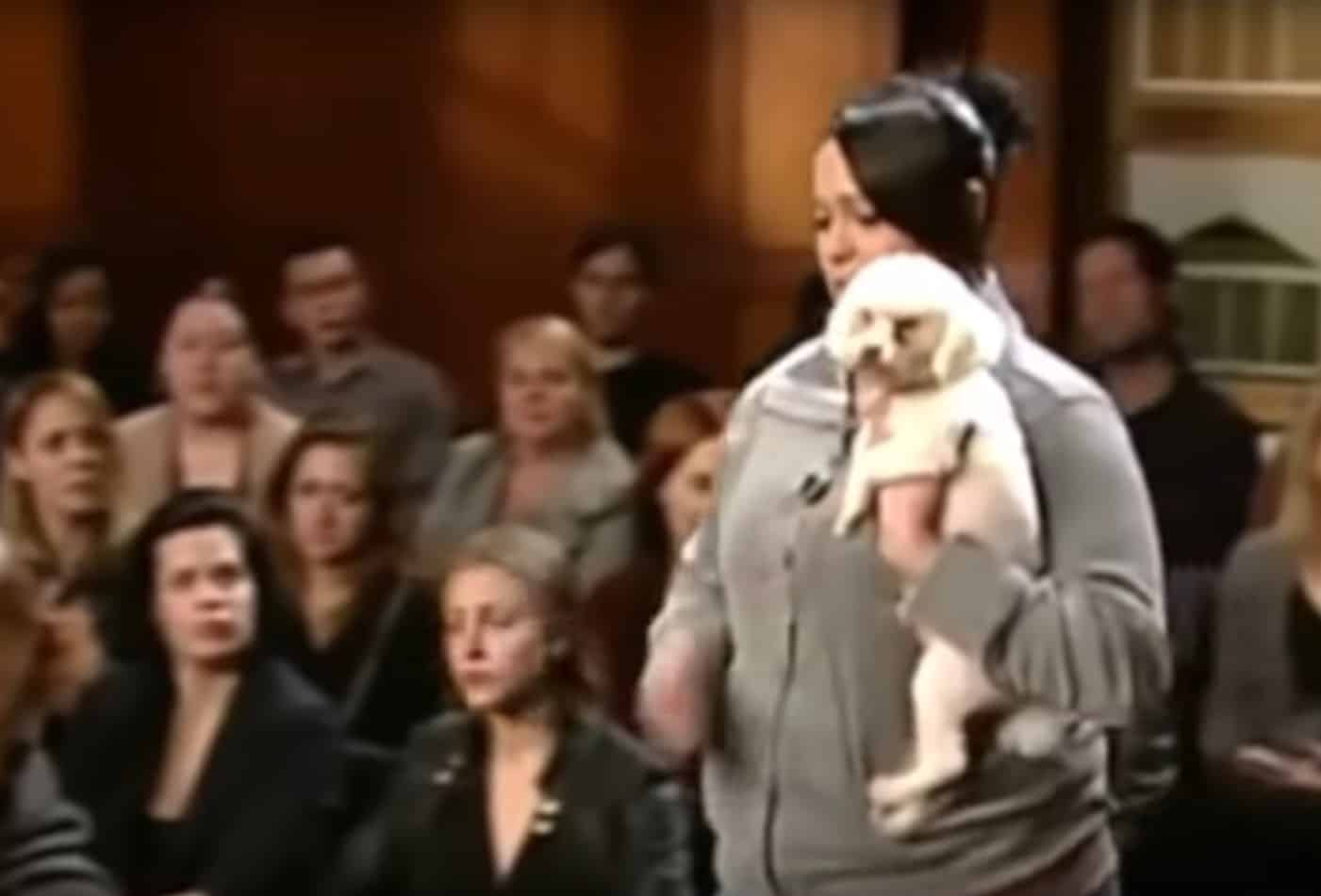 dog choose real owner court