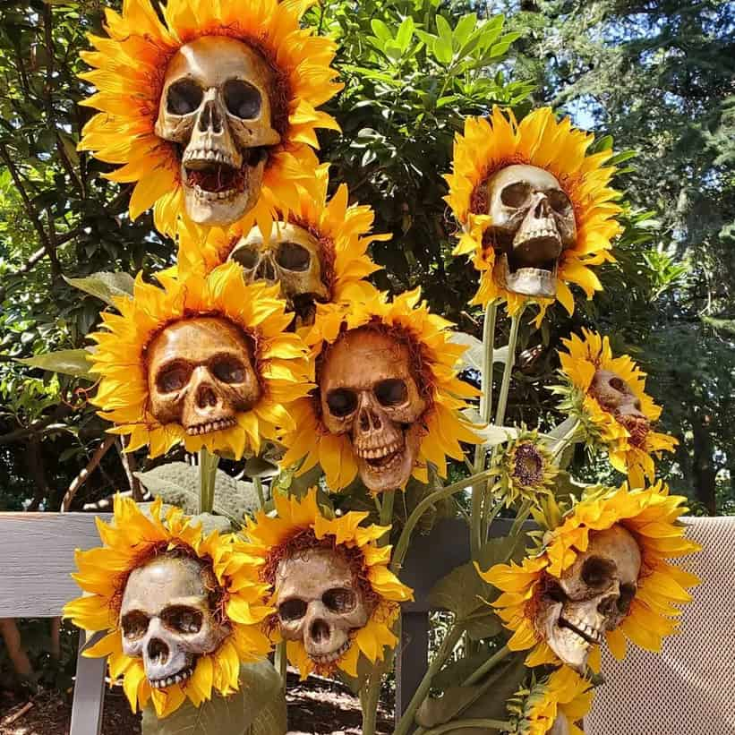 skulls sunflowers